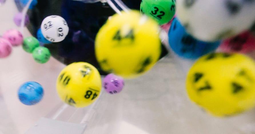 نهاية النقاش بين Free Bingo مقابل Real Money Bingo