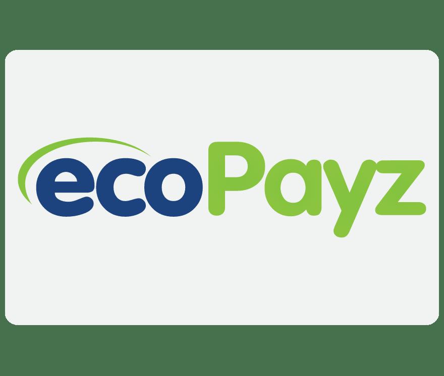 كازينو عبر البث المباشر EcoPayz